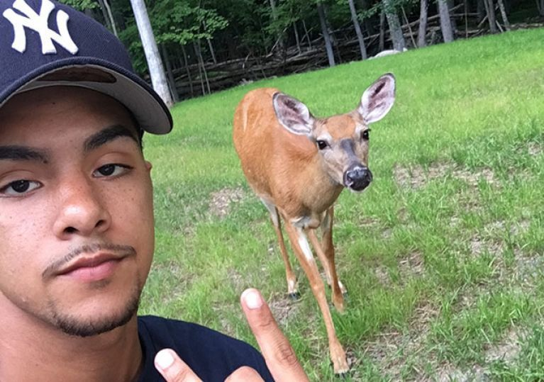 919361 2 Guy Who Went Viral For His Deer Squad Is Back With New Animal Friends