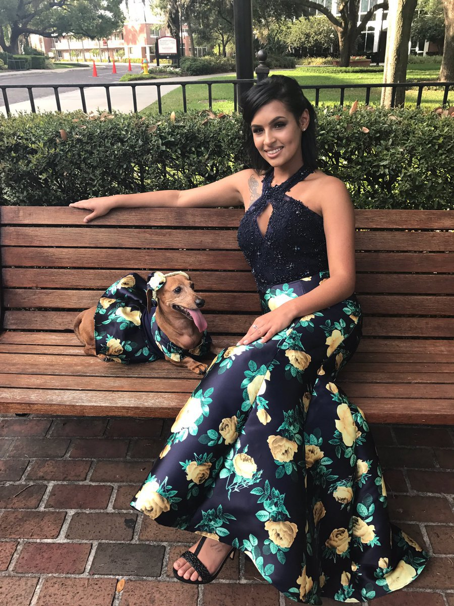 this pure little dachshund is making twitter weep with her tiny coordinated prom dress 22 This Pure Little Dachshund Is Making Twitter Weep With Her Tiny, Coordinated Prom Dress